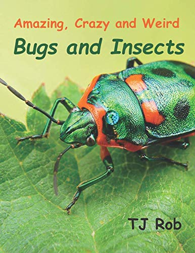 Amazing, Crazy and Weird Bugs and Insects: (Age 6 - 8) (Amazing, Crazy and Weird Animal Facts) (Amazing Insects)