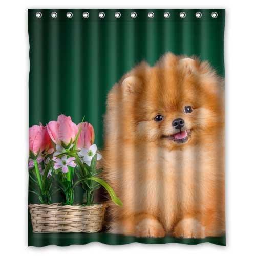 Dogs Spitz Wicker basket Animals 01 Custom Fashion Waterproof Fabric Bath Shower Curtain 60