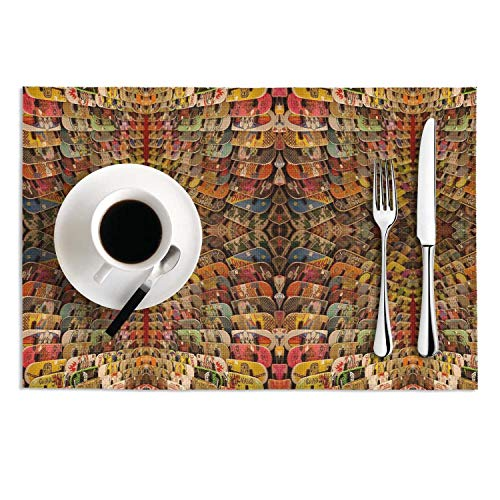 Octayi Placemats Set of 2 Heat Insulation Stain Resistant Placemat for Dining Table Skateboards Skateboarding Crossweave Woven Vinyl Washable Table Mats