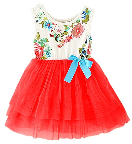 2Bunnies Baby Girls Toddler Sleeveless Floral Princess Dress Tulle Tutu Sundress (2T, Candy Red)