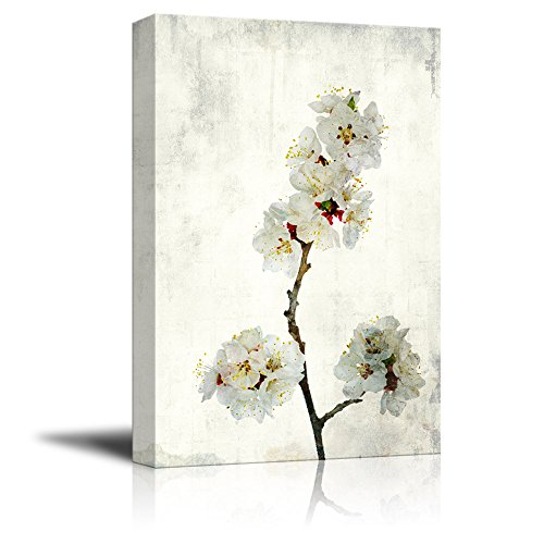 Watercolor Painting Style White Cherry Blossom on Branch Gallery