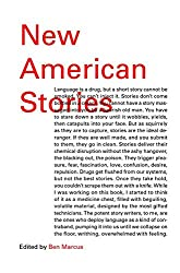 New American Stories (Vintage Contemporaries Original)