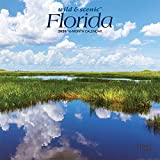 Florida Wild & Scenic 2020 7 x 7 Inch Monthly Mini Wall Calendar, USA United States of America Southeast State Nature
