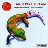 Valentine Wheels - Live in London by Tangerine Dream