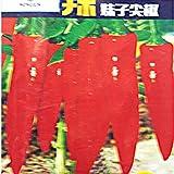 Go Garden BELLFARM Bonsai Sichuan Red Dried Chili Heirloom Hot Pepper High Germination -200pcs/pack
