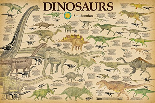 Studio B Smithsonian- Dinosaurs Info Chart Poster 36 x 24in (Dinosaur Fossil Pictures)