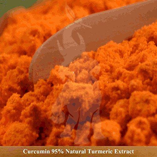 Turmeric Curcumin 95 Curcuminoids – Natural Turmeric Extract Powder, Anti-Inflammatory Supplement with 95 Standardized Curcuminoids 500 Grams 1.1 Lbs