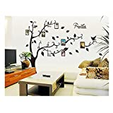 Gorgeous Best Quality Adhesive Rooms Walls Vinyl DIY Stickers / Murals / Decals / Tattoos With Black Tree, Green Leaves, Photos Presentation Frames And Quotes Designs By VAGA