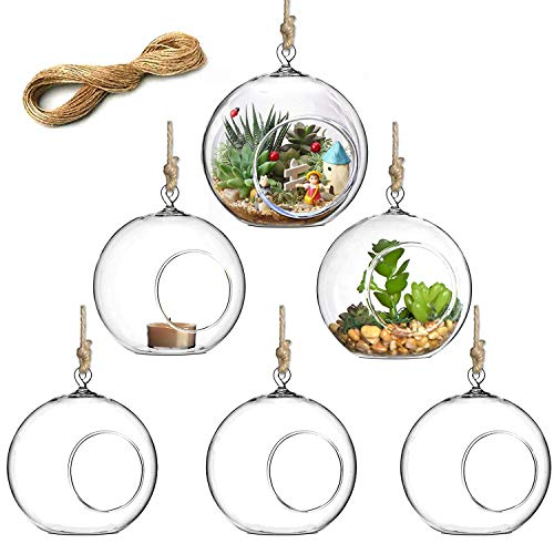 Hanging Glass Globe Air Plant Terrariums with String, Set of 6 Handmade Hanging Planter, Heat-Resistant Hanging Candle Holders (4