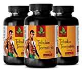 Testosterone booster libido and strength - TRIBULUS TERRESTRIS EXTRACT 1000mg - Tribulus terrestris for sex - 3 Bottle 180 Tablets