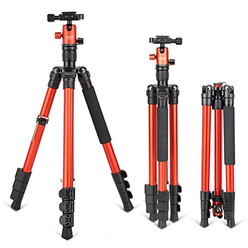 3f364a27b ZOMEI M3 Camera Tripod Aluminum Portable Lightweight Camera Stand with 360  Degree Ball Head