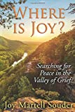 WHERE IS JOY?: Searching for Peace in the Valley of Grief