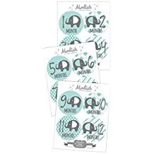 Modish - Creative Collective Baby Stickers, Elephants, Baby Boy, Elephant Baby Belly Stickers, Elephant Baby Month Stickers, First Year Stickers Months 1-12, Teal, Mint, Elephants, Boy, Grey