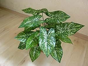 Caladium verde planta artificial decoración PLANTA H 35cm 187143getopft F42