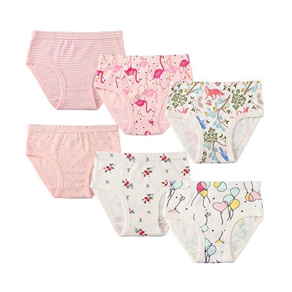 Confezione da 6 Piccola Bambine e Ragazze Biancheria Intima in Cotone da 1 a 7 Anni, Mutandine delle Neonate Undies… 2