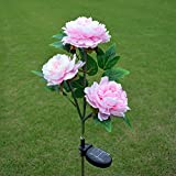 Solar Powered Artificial Peony Flower LED Lights Solar Peony Flower Lights Outdoor Decorative Landscape LED Peony Lights (Pink)