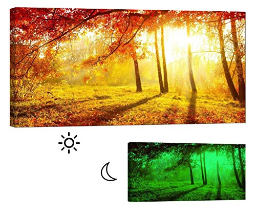 Glow in the Dark Canvas Painting - Stretched and Framed Giclee Wall Art Print - Trees Forest Outdoor Shades Of Autumn - Master Bedroom Living Room Decor - 46 x 24 inch