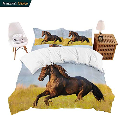 shirlyhome Hotel Luxury Bed Sheet Set-Sale Friesian Horse with Mane Gallops in Meadow Equestrian Mystery Vitality Horse Theme California King