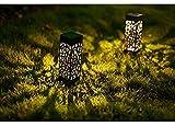 Maggift 8 Pcs Solar Powered LED Garden