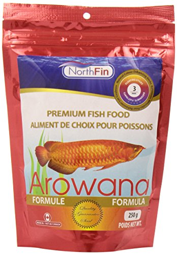 Northfin Food Arowana Formula Sticks 250 Gram Package (Best Food For Arowana Fish)