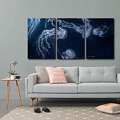 Made For You, Pretty Piece of Art, Jellyfishes in Deep Ocean x3 Panels