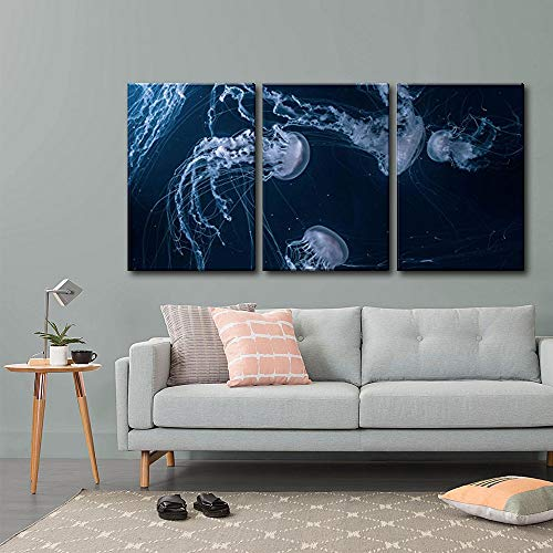 Jellyfishes in Deep Ocean x3 Panels