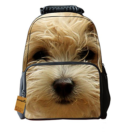 School Backpack Design Daypacks DogE 16