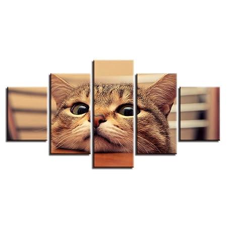 KKXXWLH Lienzo HD Imprime Fotos Marco 5 Unidades Gato Lindo ...
