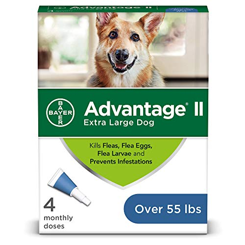 Flea and Lice Treatment for Dogs, Over 55 lb, 4 doses, Advantage II (Best Rated Flea And Tick Treatment For Dogs)