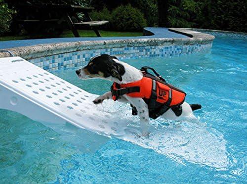 Skamper Ramp Lang Sicher Und Stressfrei Aus Dem Wasser 106 X 33 X 16 Cm Amazon De Haustier
