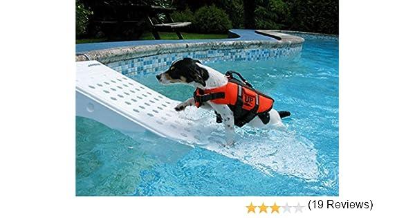 Padamed skamper Rampa de Longitud – Seguro y sin estrés el Agua – 106 X 33 X 16 cm: Amazon.es: Productos para mascotas