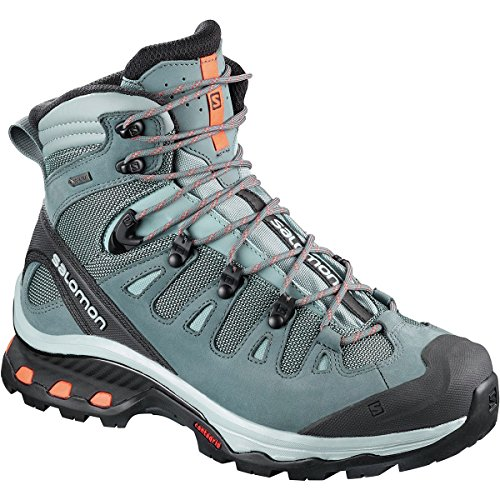 Salomon Women's Quest 4D 3 Gtx W Backpacking Boots, Lead/Stormy Weather, 8 B US