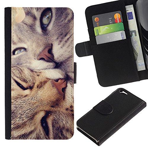 EuroCase - Apple Iphone 6 4.7 - American shorthair curl cats kiss love - Cuir PU Coverture Shell Armure Coque Coq Cas Etui Housse Case Cover