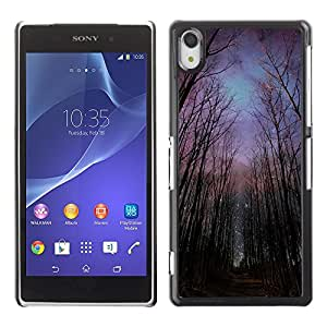 Impact Case Cover with Art Pattern Designs FOR Sony Xperia Z2 Night Forest Sky Universe Creepy Betty shop