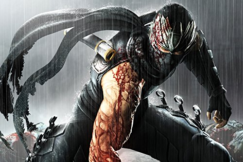 Tomorrow sunny G183 Ninja gaiden 3 Warrior ninja Game Poster Art Wall Pictures for Living Room in Canvas fabric cloth Print