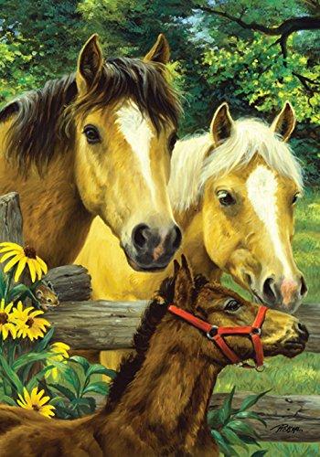 Toland Home Garden Horse Family 12.5 x 18 Inch Decorative Cute Spring Summer Farm Pony Colt Garden Flag