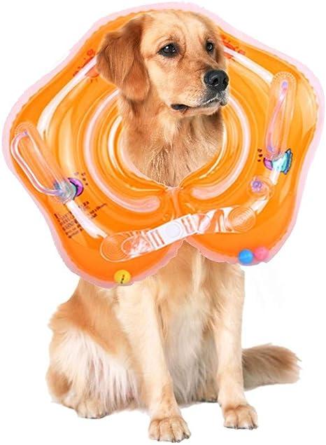 LAIHUI - Collar protector inflable para entrenamiento de mascotas ...