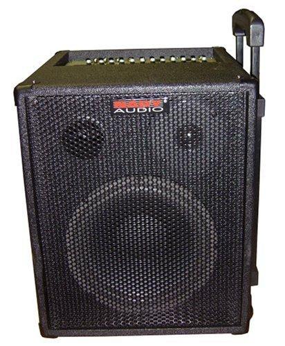 40 Watt Portable Sound System - 5