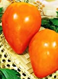 Tomato Seeds Bull heart GOLD Organic Heirloom Vegetable Seeds