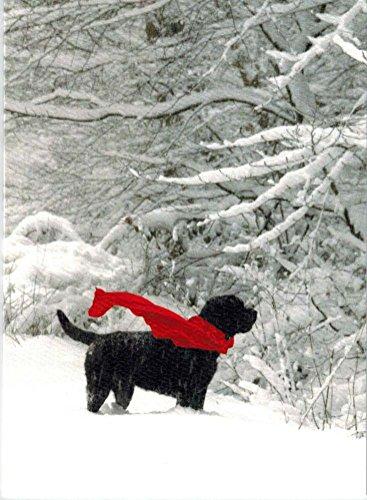 Black Labrador Red Scarf Christmas Cards