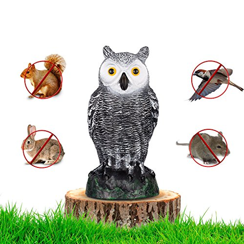 "briteNway Ultimate Scarecrow Owl Decoy Statue Realistic Fake Owl Outdoor Pest & Bird Deterrent, Hand-Painted Garden Protector, Scares Away Squirrels, Pigeons, Rabbits & More – 10,5"" Hollow ()"