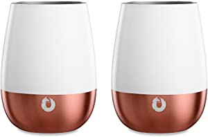 Sweepstakes: SNOWFOX Insulated Stainless Steel Stemless Wine Glasses