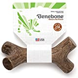 #4: Benebone Maplestick Real Wood Durable Dog Stick Chew Toy, Made in USA, Small