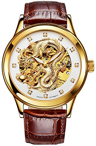 Mens Dragon Collection Hollow Automatic Mechanical Luminous waterproof Brown Leather White Dial Watches