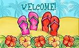 Toland Home Garden Sandy Sandals Indoor/Outdoor Standard Mat, 18