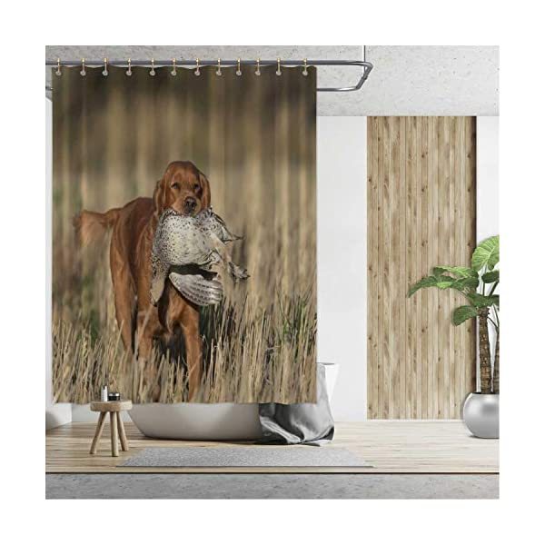 ALUONI an English Cocker Spaniel with a Sharptailed Grouse Shower Curtains Set with Hooks,054446 for Shower,65''W x 71''H 2