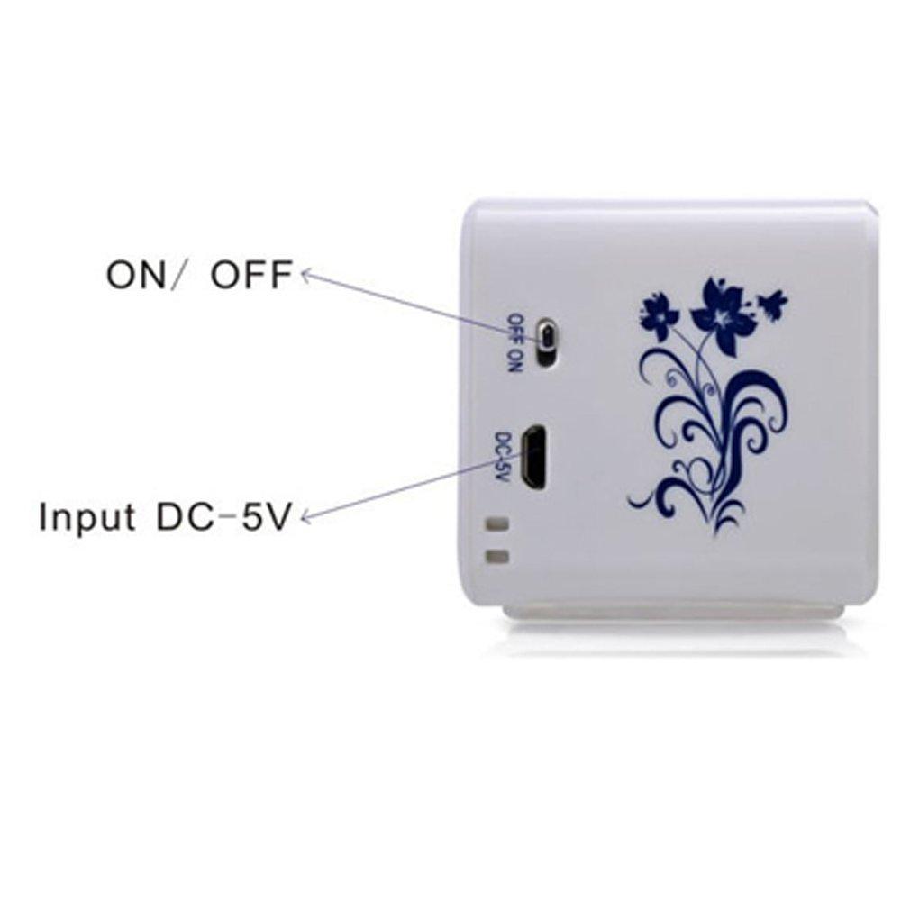 iwish TT032B Portable Mini Digital Speaker USB Flash Drive Micro SD//TF Card Music MP3 Player FM Radio Blue and White Porcelain Plastic