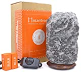 Hazantree Chenab (8-11 lbs, 8 to 10'') Caviar Grey Himalayan Salt Lamp- Authentic Gray Himalayan Salt Rock Lamp on World Renown Rosewood Base- Made in Pakistan-with Dimmer Switch, hymalain Salt Lamps
