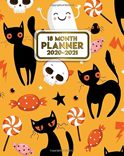 Halloween Calendar 2021 18 Month Planner 2020 2021: Funky Halloween Weekly Organizer