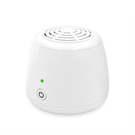 Review WSTA Portable Ozone Generator